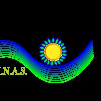 Progetto LINAS ***Online sito web***
