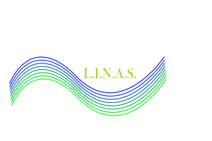 LINASnosole